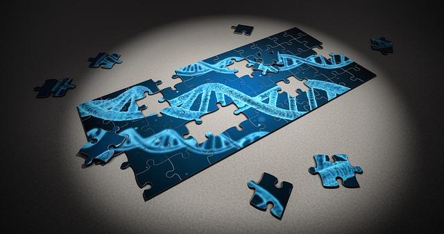 puzzle-2500333_640